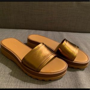 See By Chloe, Colorblock Sandal in Bronze, Size 7